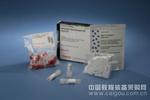 LipoHifectTM基因转染试剂
