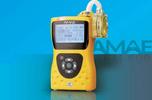 恒奥德仪直销  防爆型个体空气采样器,便携式大气采样器,便携式个体采样器