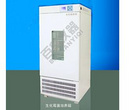 SPX-250BF生化霉菌培养箱