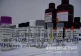 人螺旋肽(Helical Peptide)ELISA Kit