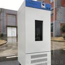霉菌培养箱WK05-SHX-80
