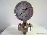螺纹型隔膜压力表/膜压力表