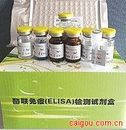 尿微量IgG(IgG)ELISA试剂盒
