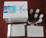 PCT试剂盒,人降钙素原ELISA试剂盒