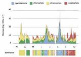 水体富营养化在线观测预报系统