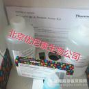 Pierce  BCA Protein Assay Kit 23225