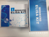 小鼠SP-D 检测试剂盒