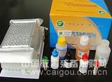 牛磷酸烯醇式丙酮酸羧激酶(PCK)ELISA试剂盒