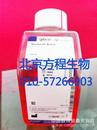 GIBCO10438-018经过质量认证和热灭活的胎牛血清