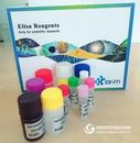 KLK1,进口大鼠激肽释放酶1ELISA试剂盒