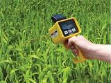 便携式叶绿素含量仪CM1000