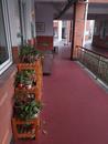 浩康运动地板为幼儿园建设安全走廊