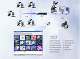 网络版互动实验室技术原理图
