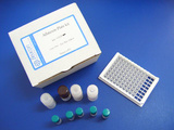 氨苄西林检测试剂盒