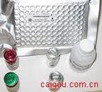 组织蛋白酶L Elisa kit