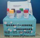 大鼠血管生成素2(ANG-2)ELISA Kit
