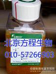 GIBCO16140-071热灭活胎牛血清