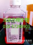 HyCloneSH30084.03胎牛血清(澳洲来源)