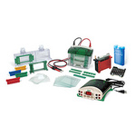 美国Bio-Rad小型垂直板电泳槽|Mini-PROTEAN Tetra Cell, Mini Trans-Blot Module, and PowerPac Basic Power Supply