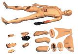 多功能人体创伤护理模拟人