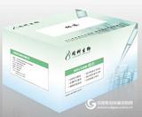 Toneclone无缝克隆试剂盒现货厂家促销价格,同科生物