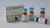 松萝酸  CAS:125-46-2
