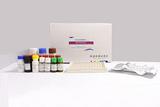 黄曲霉毒素B1(AFB1)酶免检测试剂盒【18分钟标准型】