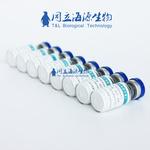 重组人白细胞介素2(Human IL-2)