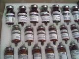 欧洲药典标准品Y0000137-北京绿百草提供