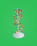 教学模型-DNA分子螺旋结构模型