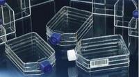 三層細胞培養瓶   TripleFlasks