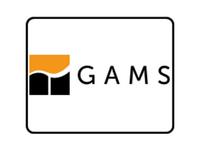 GAMS 丨 通用建模软件