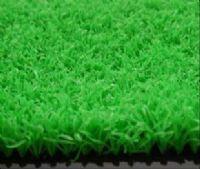 供应高尔夫球专用草