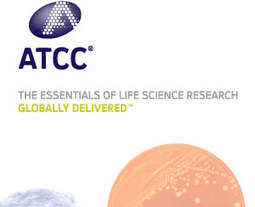 美国ATCC 细胞株 菌株代理