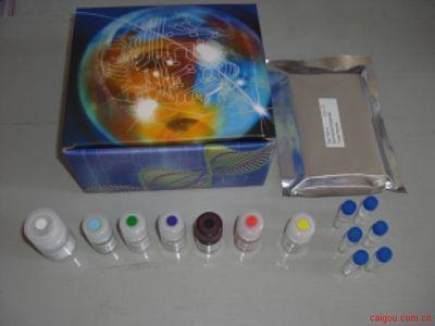 大鼠主要组织相容性复合体Ⅰ类Elisa试剂盒,MHCⅠ/AgBⅠ/H-1Ⅰ试剂盒