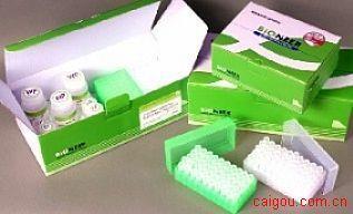 猪白介素3Elisa试剂盒,IL-3试剂盒