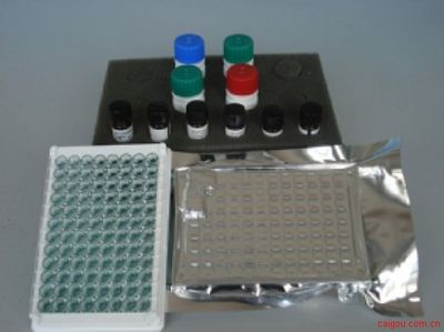 小鼠大内皮素(BigET)酶联免疫(Elisa)试剂盒