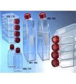 人肝癌细胞,系,Bel-7402细胞