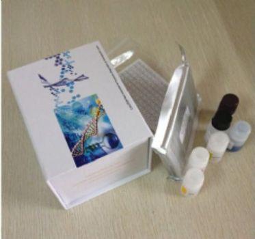 降钙素受体(CTR)检测试剂盒(酶联免疫吸附试验法)