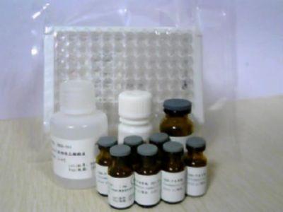 人胰岛素自身抗体(IAA)ELISA试剂盒
