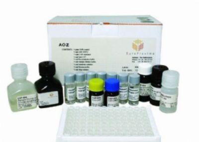 兔子白介素6(IL-6)ELISA试剂盒