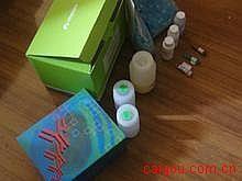 大鼠凝血因子ⅩⅢ(FⅩⅢ)ELISA试剂盒
