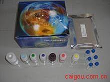 人复合前列腺特异性抗原Elisa试剂盒