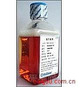 琼脂糖凝胶4BFFADP Sepharose 4BADP