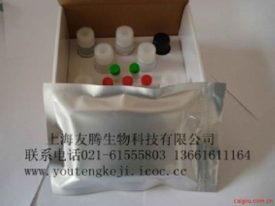 大鼠CCL11 ELISA试剂盒