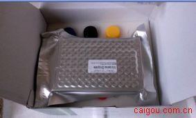 麦胚凝集素/凝集蛋白(WGA)ELISA Kit