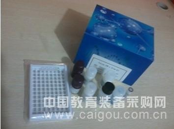 大鼠绒毛促性腺激素(HCG)酶联免疫试剂盒