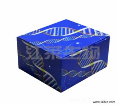 人低氧诱导因子1α(HIF-1α)ELISA试剂盒说明书