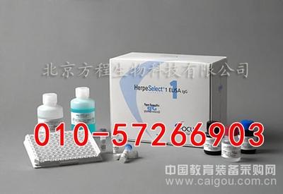 大鼠Ⅲ型胶原ELISA试剂盒价格/Col Ⅲ ELISA Kit说明书