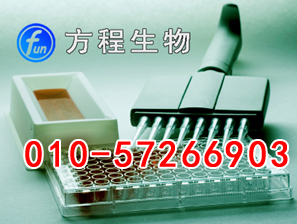 大鼠血小板膜糖蛋白ⅡbⅢaELISA试剂盒价格/GP-ⅡbⅢa/CD41+CD61 ELISA Kit说明书